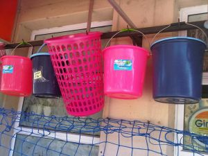 Assorted plasticware